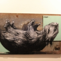 Snapshots   ROA   Melbourne   exhibitions