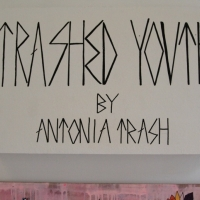Snapshots   Antonia Trash   Trashed Youth   street art genres art event photos painting genres melbourne illustration genres exhibitions