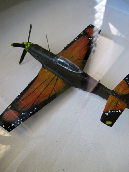 Plane_Specimen_1_Ryan_Boserio_2011_Mixed_media
