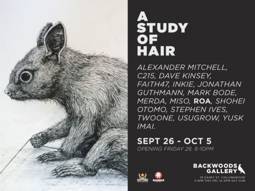 A STUDY OF HAIR BACKWOODS ROA 500x375 Exhibition – A Study of Hair – Backwoods Gallery – Collingwood in exhibitions